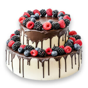 Cake VS-30