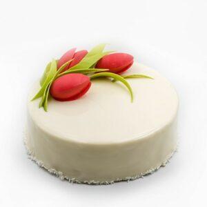Cake MT-5