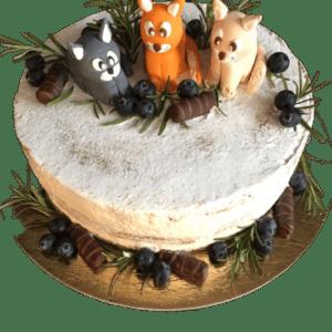 Cake VT-70