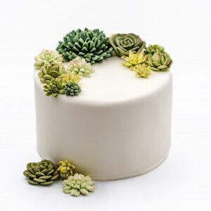 Cake PR-42